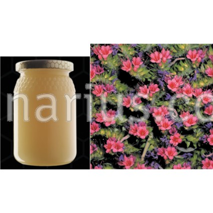 Miel de Tajinaste - Echium sp.