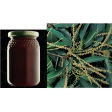 Chestnut Honey -  Castanea sativa