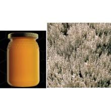 Teide White Broom Bee Honey - Spartocytisus supranubius