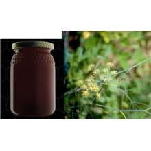 Miele di finocchio selvatico - Foeniculum vulgare