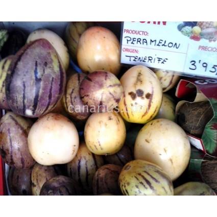 Solanum muricatum - Pepino, Melon Pear