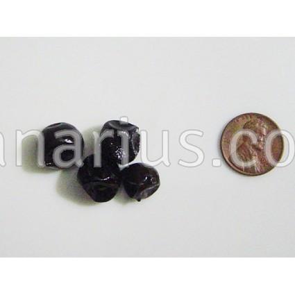 Myrciaria floribunda - Guavaberry