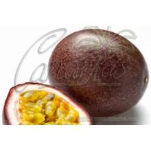 Passiflora edulis - Parchita Morada - Purple Passionfruit