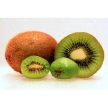 Actinidia arguta 'Issai' - Small Kiwi