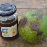 Avocado-honey