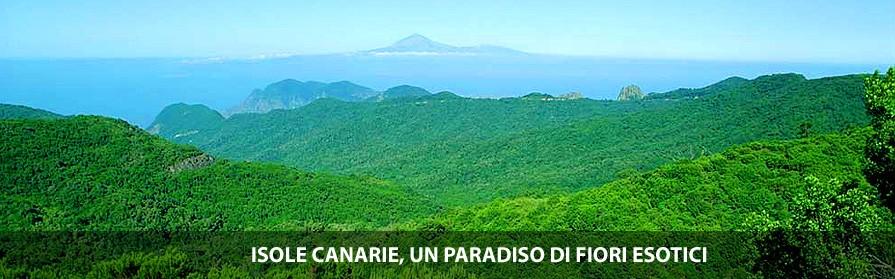 Isole Canarie paraiso fiori esotici