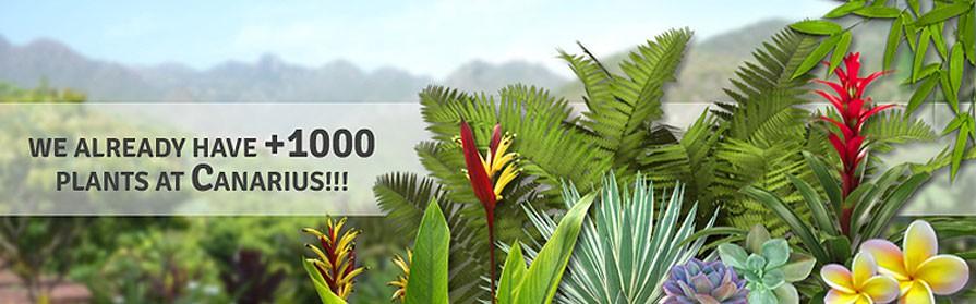 +1000 Plants