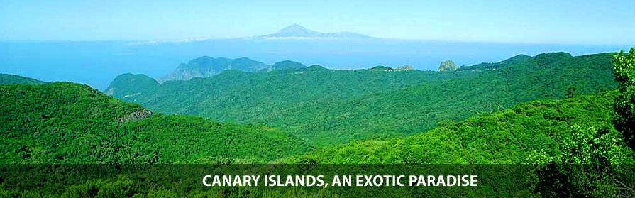 Canary Islands, exotic plants paradise
