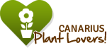 Canarius Plants Lovers